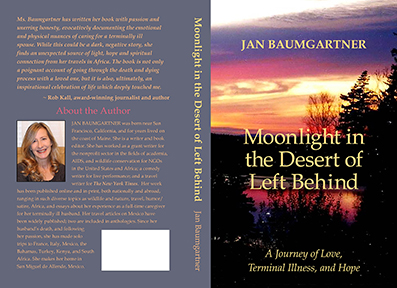 Moonlight in the Desert of Left Behind