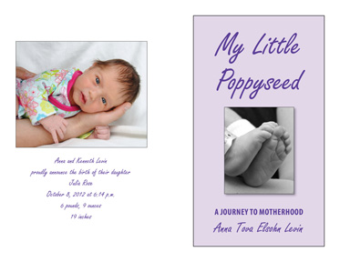 My Little Poppyseed: A Journey to Motherhood